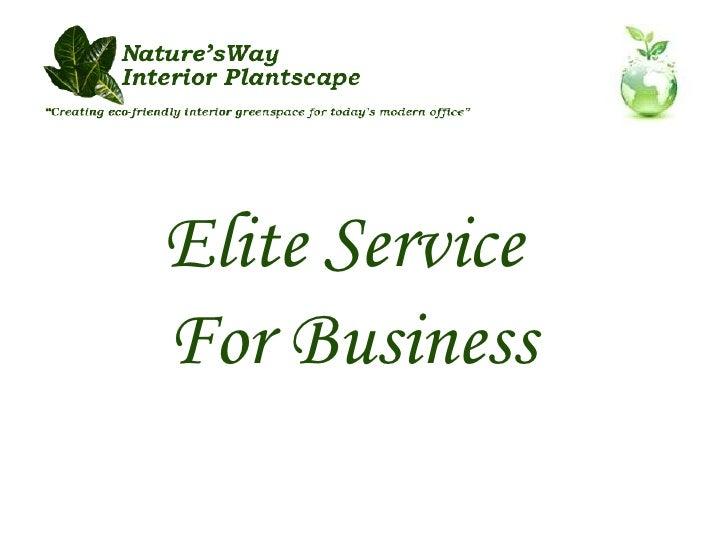 Elite Service  For Business