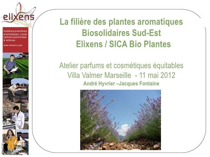 La filière des plantes aromatiques        matières premières        aromatiques, comp        ositions parfumées           ...