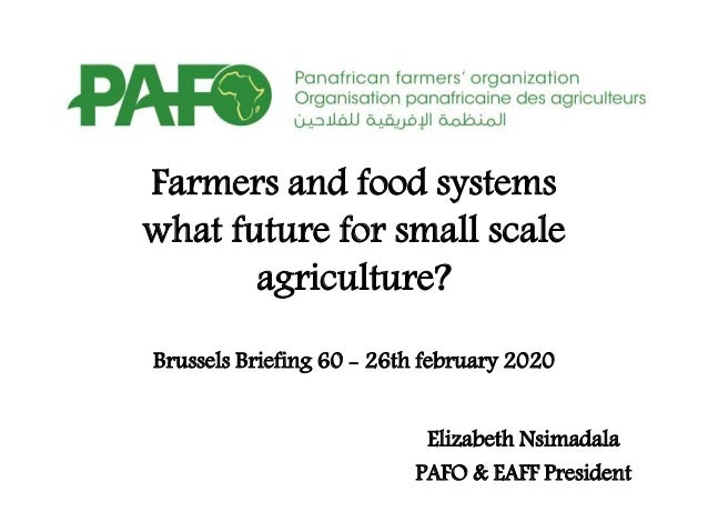 Farmers and food systems what future for small scale agriculture? Brussels Briefing 60 - 26th february 2020 Elizabeth Nsim...