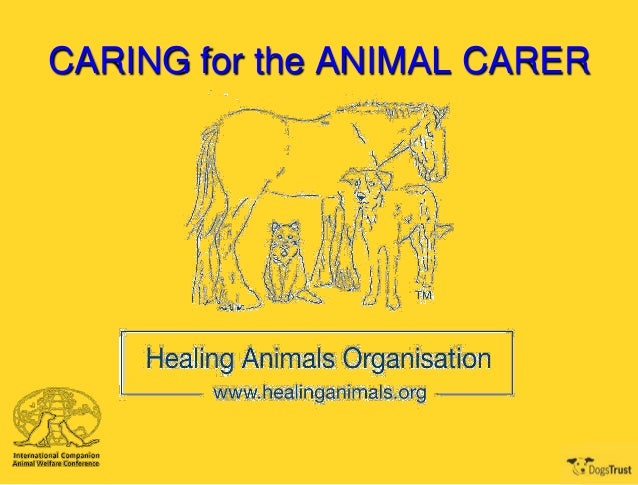 CARING for the ANIMAL CARER