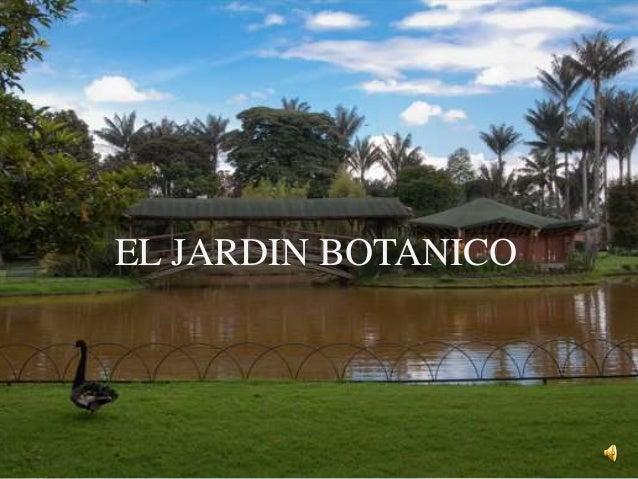 El jardin botanico for El jardin botanico