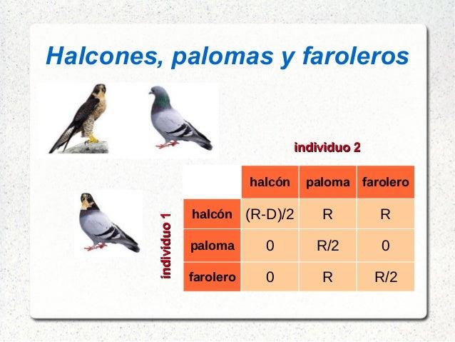 Halcones, palomas y faroleros halcón paloma farolero halcón (R-D)/2 R R paloma 0 R/2 0 farolero 0 R R/2 individuo1indi...