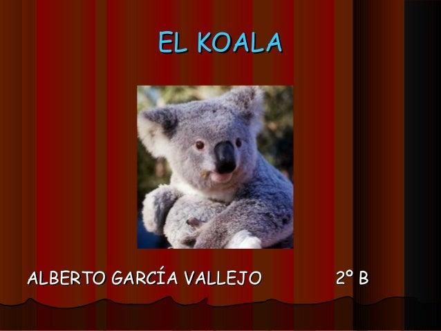 EL KOALAEL KOALA ALBERTO GARCÍA VALLEJOALBERTO GARCÍA VALLEJO 2º B2º B