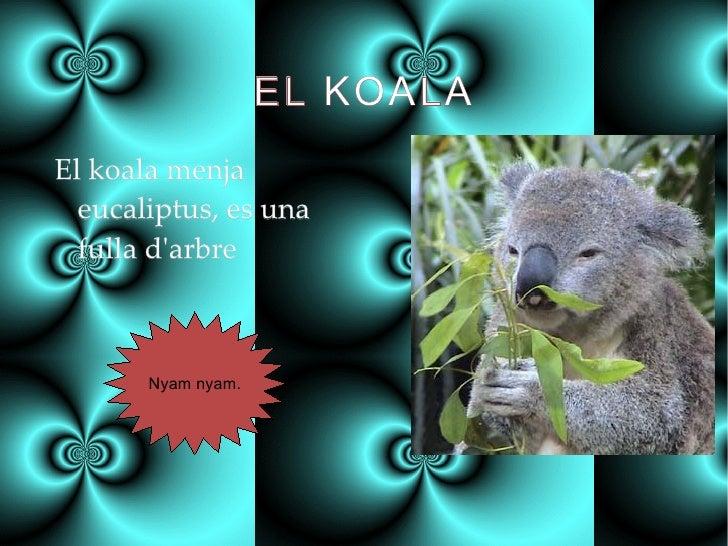 EL KOALA <ul><li>El koala menja eucaliptus, es una fulla d'arbre </li></ul>Nyam nyam.