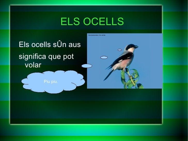 ELS OCELLS <ul>Els ocells són aus significa que pot volar </ul>Piu piu.