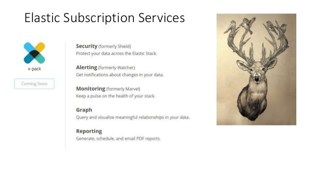 Elastic Subscription Services