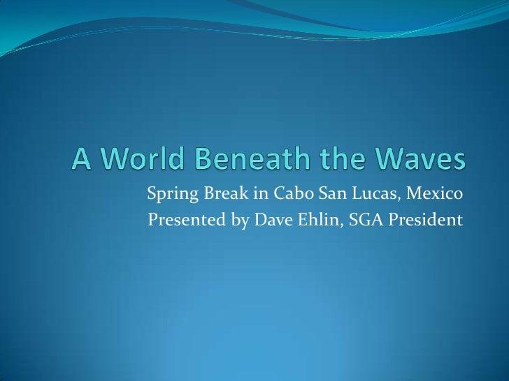 A World Beneath the Waves<br />Spring Break in Cabo San Lucas, Mexico<br />            Presented by Dave Ehlin, SGA Presid...
