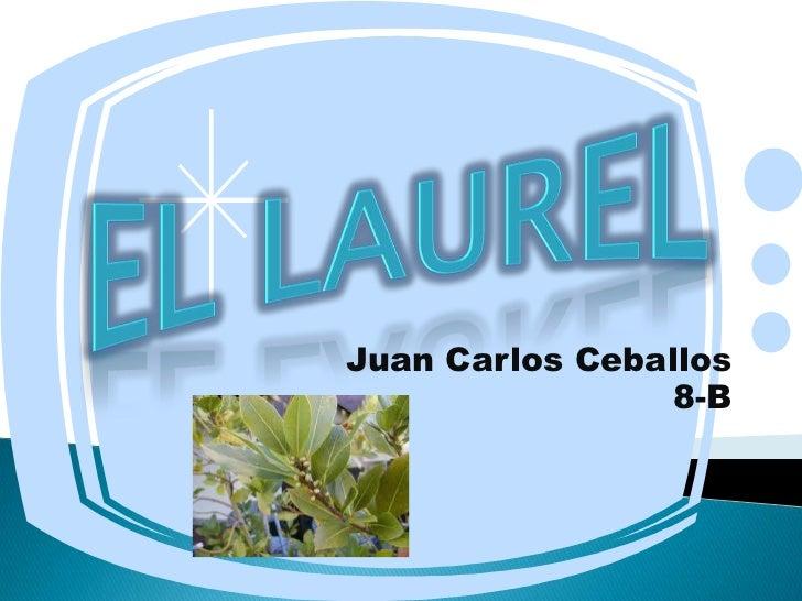 Juan Carlos Ceballos                 8-B