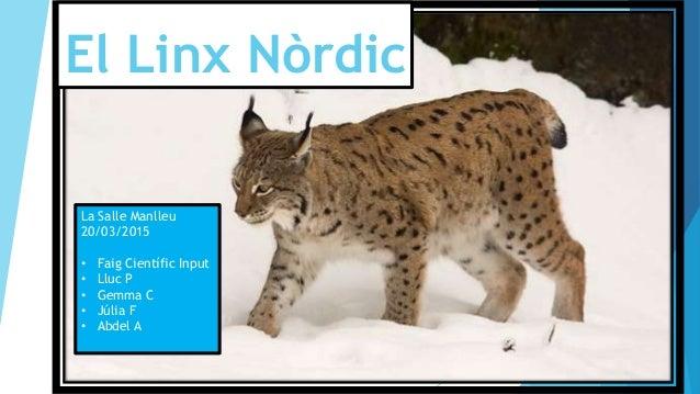 El Linx Nòrdic La Salle Manlleu 20/03/2015 • Faig Científic Input • Lluc P • Gemma C • Júlia F • Abdel A