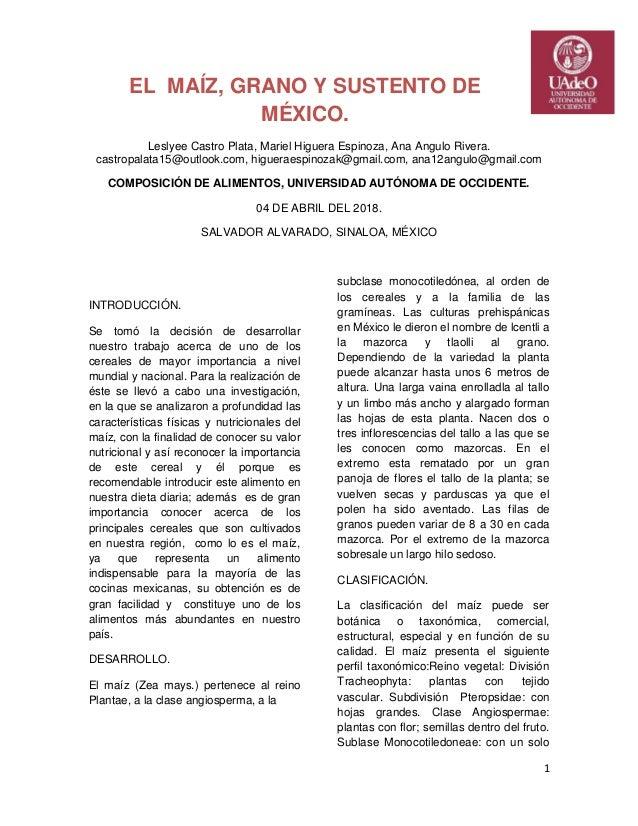 El maíz, grano y sustento de México