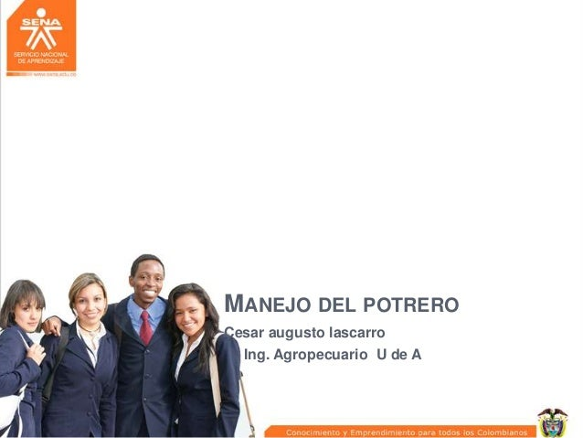 MANEJO DEL POTRERO Cesar augusto lascarro Ing. Agropecuario U de A