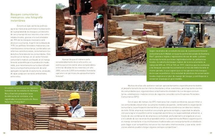 Bosques comunitarios       mexicanos: una fotografía       instantánea               Durante el siglo veinte las políticas...