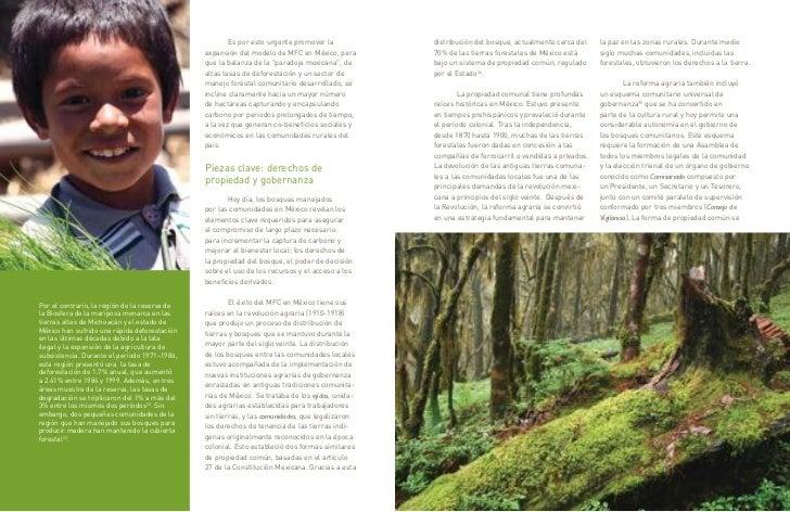 Es por esto urgente promover la            distribución del bosque, actualmente cerca del    la paz en las zonas rurales. ...