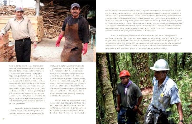 locales, particularmente los derechos sobre la explotación maderable, en combinación con una                              ...