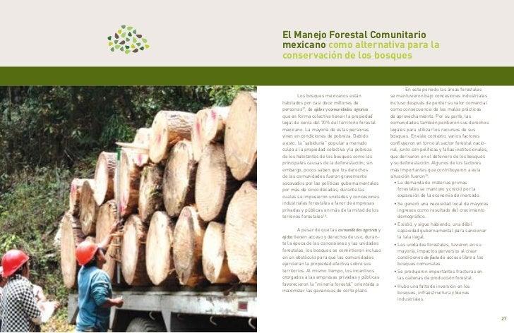 El Manejo Forestal Comunitario     mexicano como alternativa para la     conservación de los bosques                      ...
