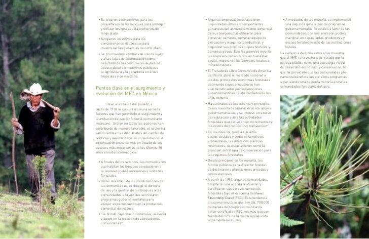 • Se crearon desincentivos para los            • Algunas empresas forestales bien               • A mediados de los novent...