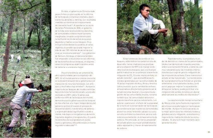 En Asia, el gobierno de China ha dado     pasos firmes y a gran escala en la reforma     de los bosques y empresas estatale...