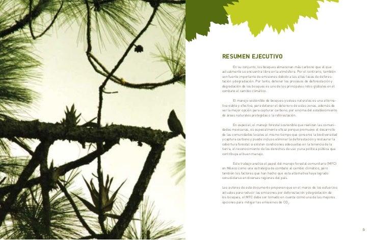 RESUMEN EJECUTIVO           En su conjunto, los bosques almacenan más carbono que el que    actualmente se encuentra libre...