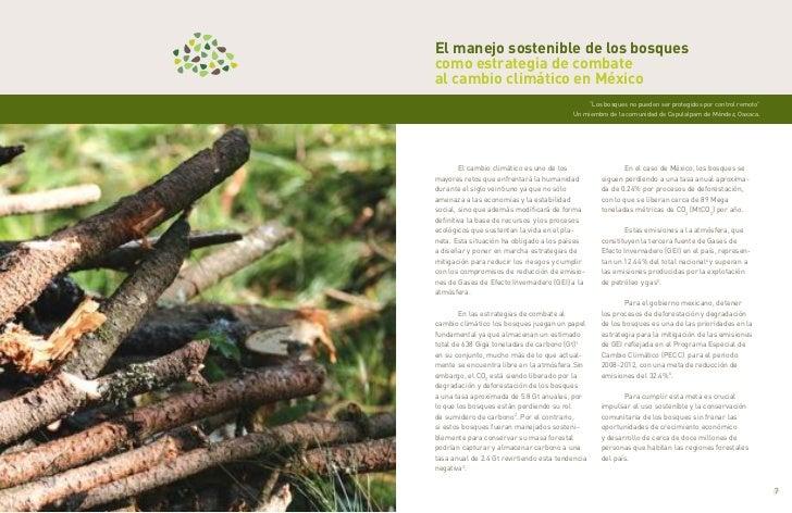 El manejo sostenible de los bosques    como estrategia de combate    al cambio climático en México                        ...