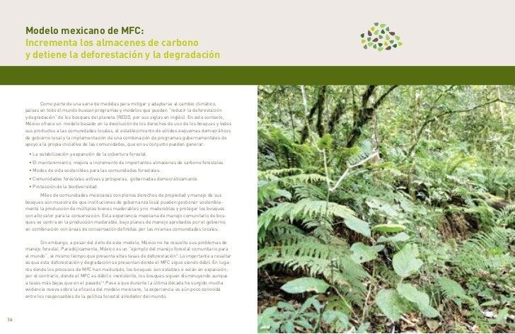 Modelo mexicano de MFC:     Incrementa los almacenes de carbono     y detiene la deforestación y la degradación           ...