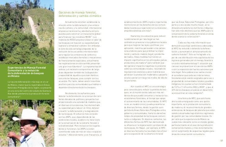 Opciones de manejo forestal,                                                      deforestación y cambio climático        ...