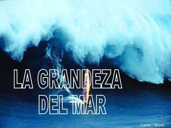 LA GRANDEZA DEL MAR Carlos - Brasil