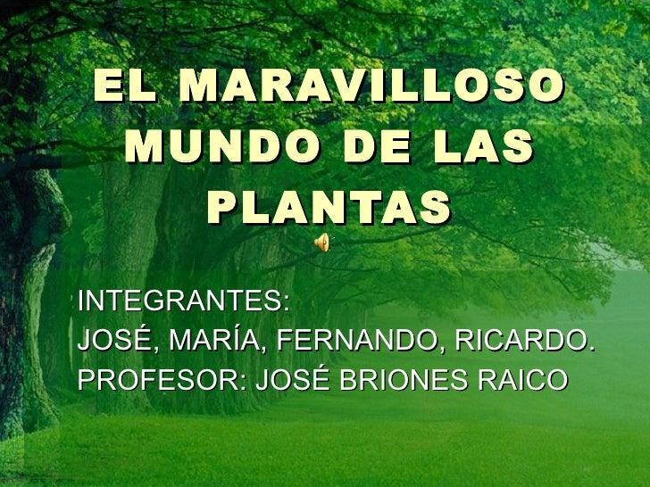 EL MARAVILLOSO MUNDO DE LAS PLANTAS INTEGRANTES:  JOSÉ, MARÍA, FERNANDO, RICARDO. PROFESOR: JOSÉ BRIONES RAICO