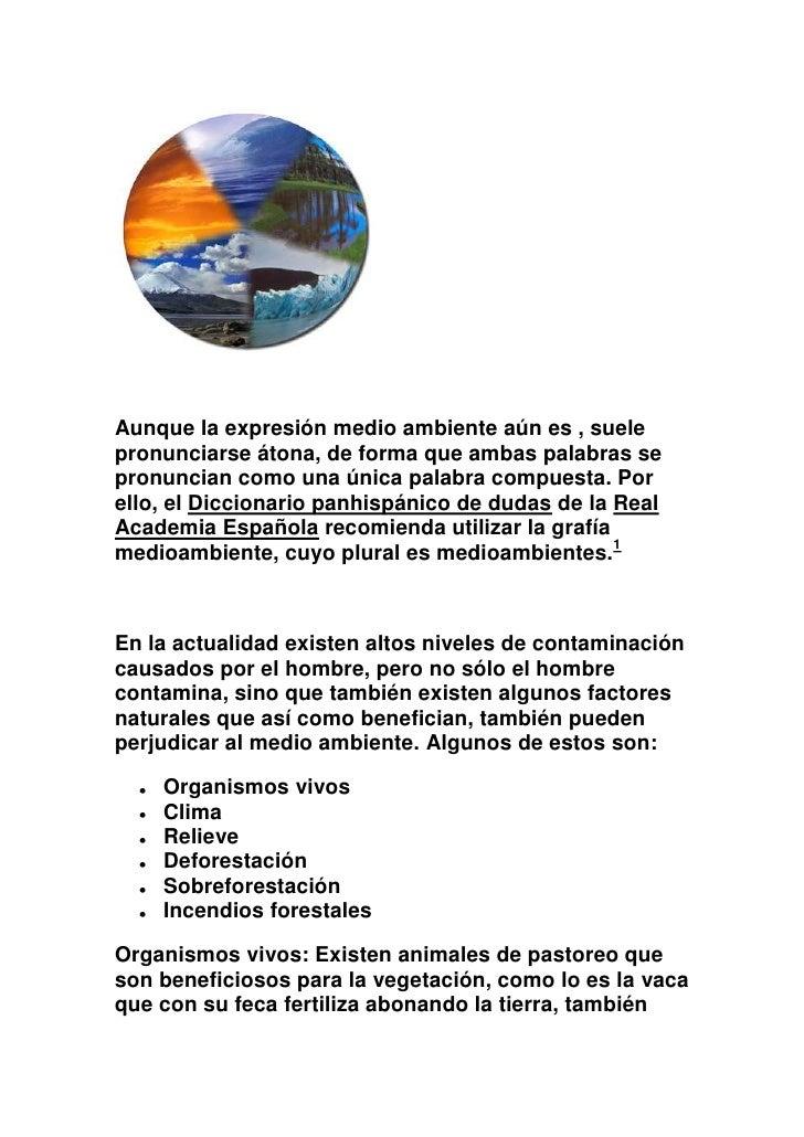 El medio ambiente Slide 3