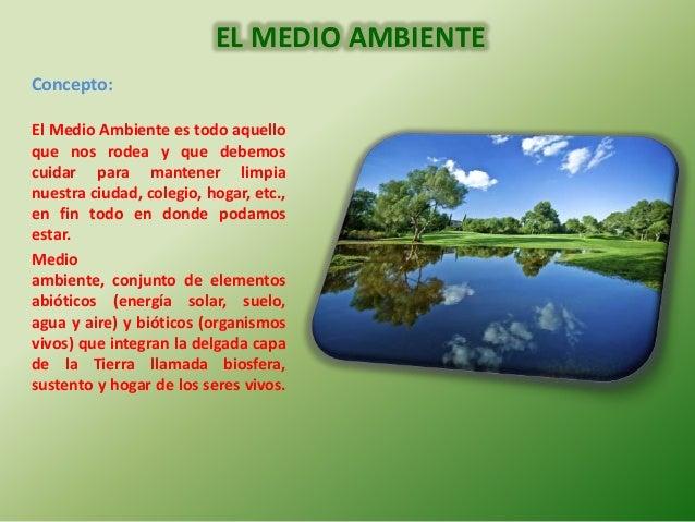 El medio ambiente erika for Definicion de cuarto