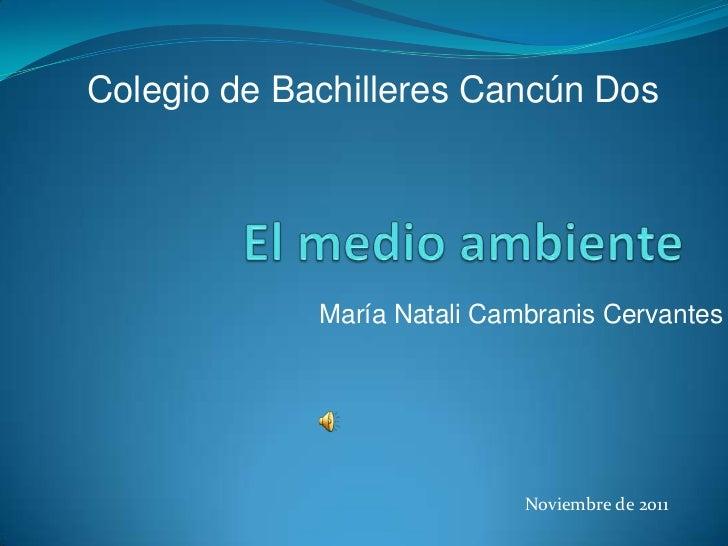 Colegio de Bachilleres Cancún Dos             María Natali Cambranis Cervantes                             Noviembre de 2011
