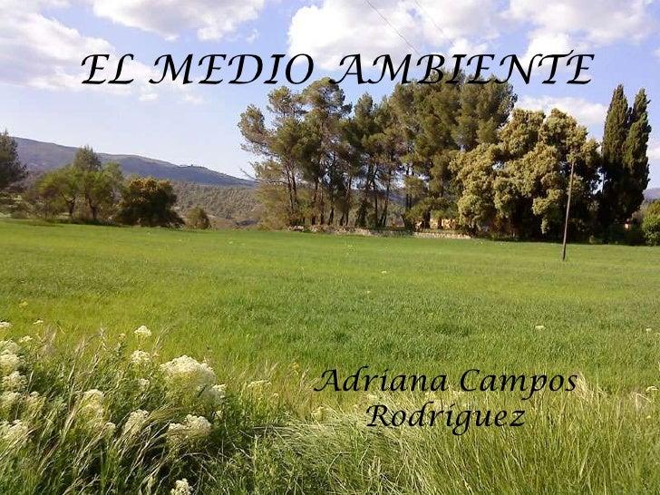 EL MEDIO AMBIENTE       Adriana Campos         Rodríguez