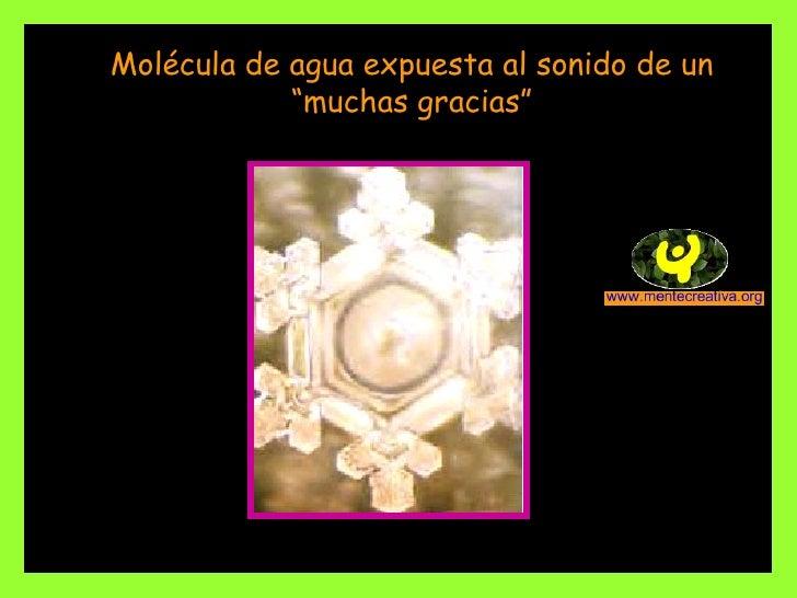 """Molécula de agua expuesta al sonido de un """"muchas gracias"""""""