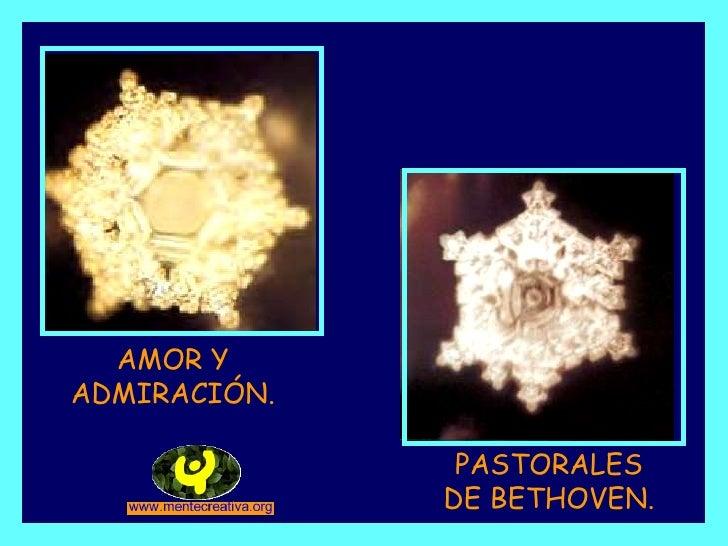 AMOR Y ADMIRACIÓN. PASTORALES DE BETHOVEN.