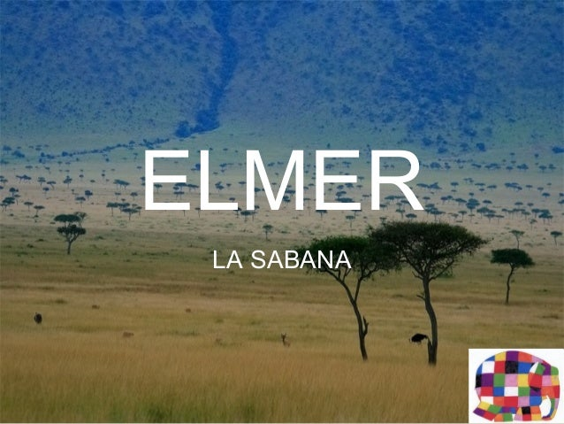 ELMER LA SABANA