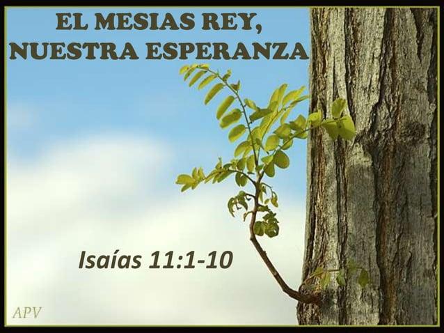 EL MESIAS REY, NUESTRA ESPERANZA  Isaías 11:1-10