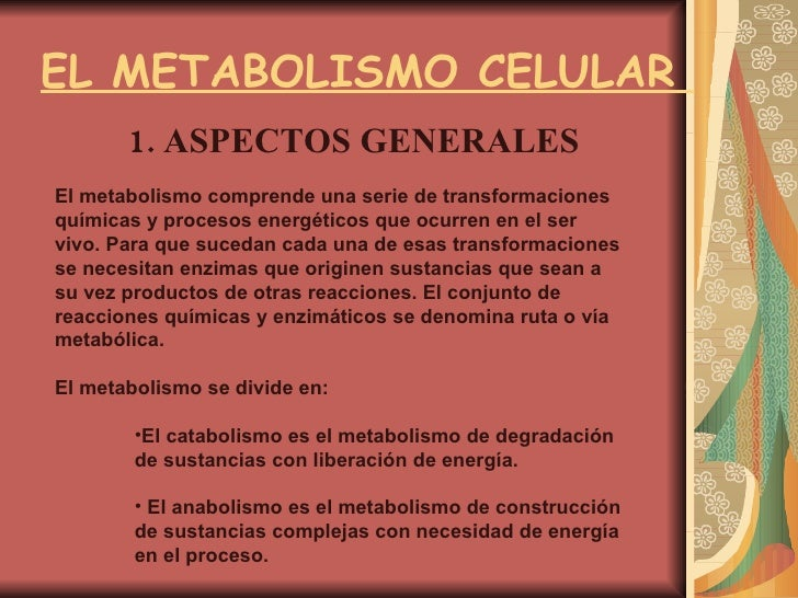 EL METABOLISMO CELULAR  1. ASPECTOS GENERALES  <ul><li>El metabolismo comprende una serie de transformaciones químicas y p...