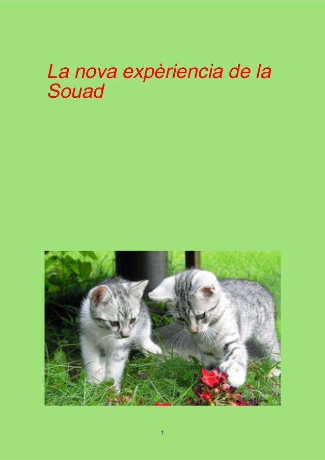 La nova expèriencia de la Souad 1