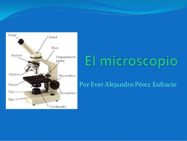 Por Ever Alejandro Pérez Eufracio