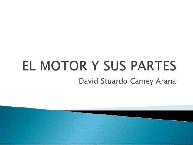 David Stuardo Camey Arana
