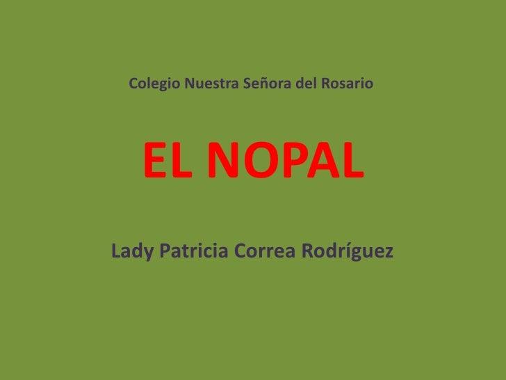 Colegio Nuestra Señora del Rosario   EL NOPALLady Patricia Correa Rodríguez