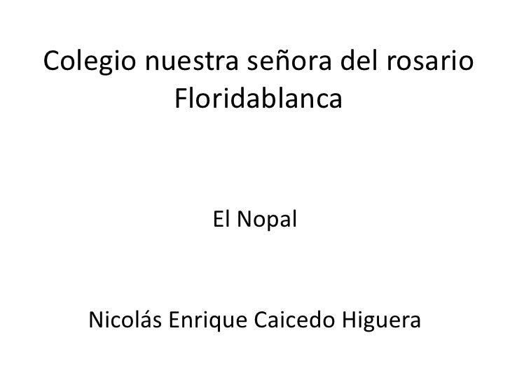 Colegio nuestra señora del rosario          Floridablanca              El Nopal   Nicolás Enrique Caicedo Higuera