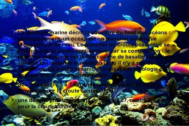 El oceano Slide 3