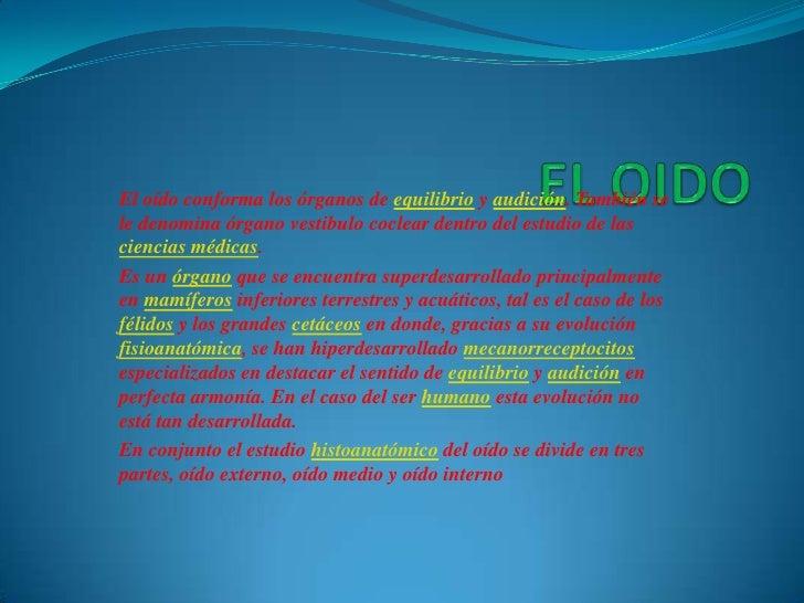 EL OIDO<br />El oído conforma los órganos de equilibrio y audición. También se le denomina órgano vestibulo coclear dentro...