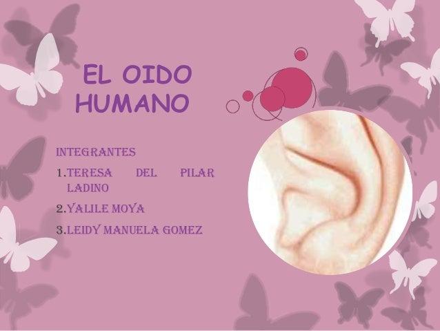 EL OIDO HUMANO INTEGRANTES 1.TERESA DEL PILAR LADINO 2.YALILE MOYA 3.LEIDY MANUELA GOMEZ