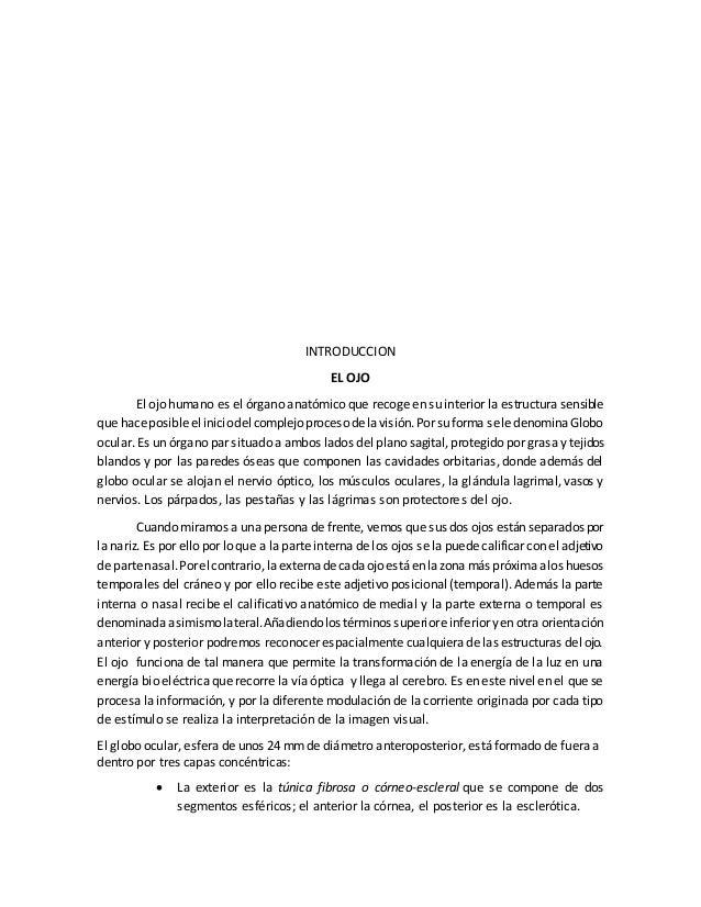 Bonito Introducción A La Anatomía Y Fisiología De Powerpoint ...