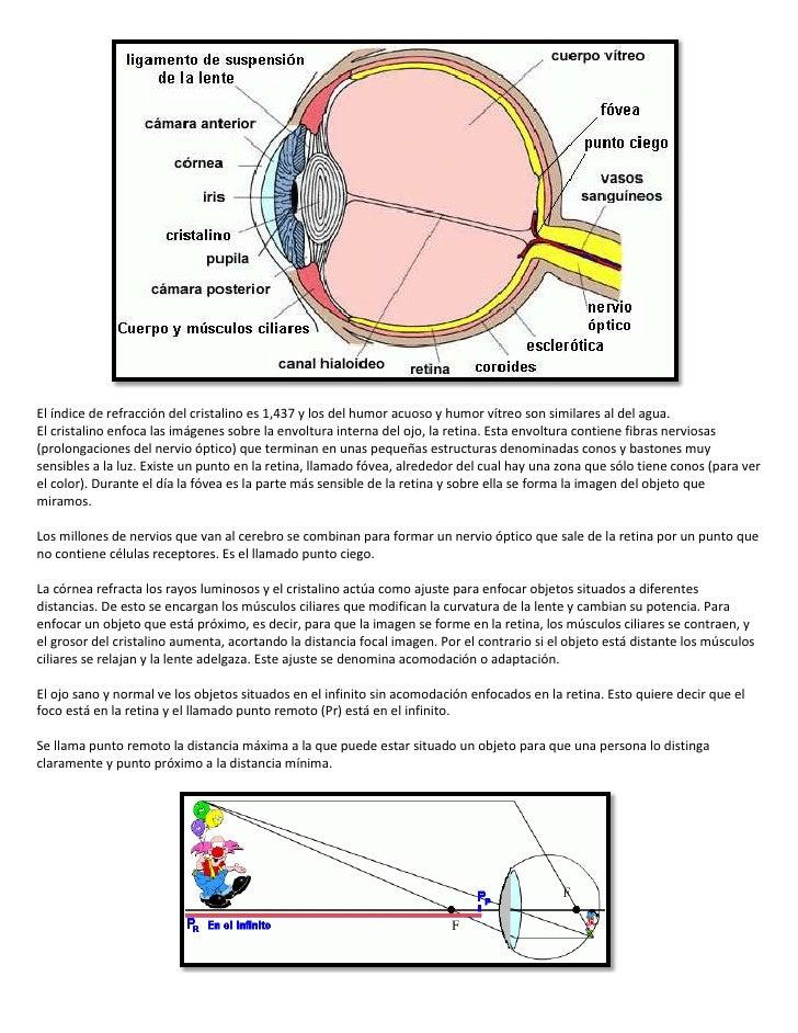 El ojo humano y la cámara