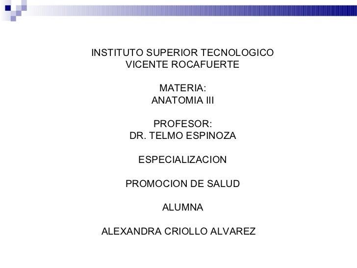 INSTITUTO SUPERIOR TECNOLOGICO      VICENTE ROCAFUERTE          MATERIA:         ANATOMIA III           PROFESOR:      DR....