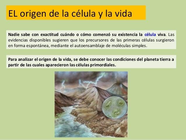 Resultado de imagen de Las primeras células vivas en la tierra