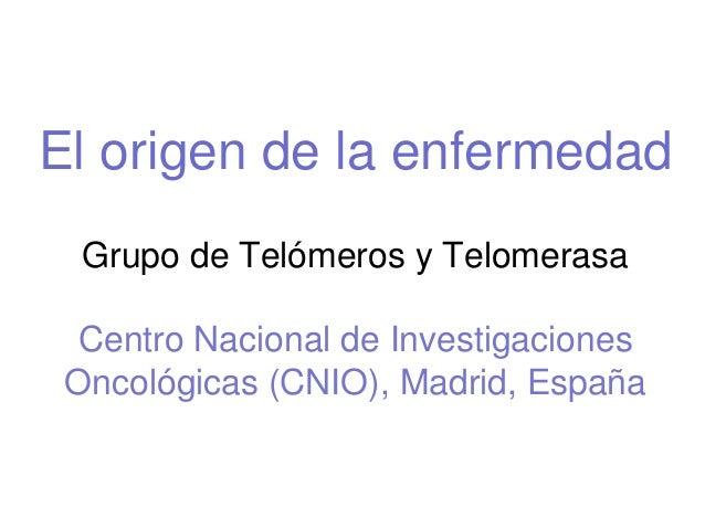 El origen de la enfermedad Grupo de Telómeros y Telomerasa Centro Nacional de Investigaciones Oncológicas (CNIO), Madrid, ...