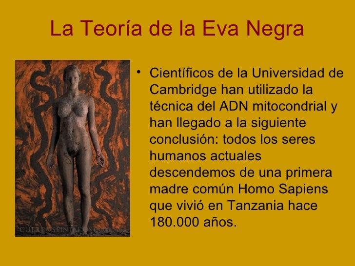 La Teoría de la Eva Negra <ul><li>Científicos de la Universidad de Cambridge han utilizado la técnica del ADN mitocondrial...
